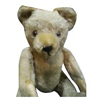 Adorable Antique Mohair Teddy bear