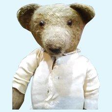 Large Antique Teddy bear