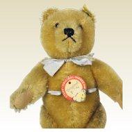 Vintage Steiff Original Teddy Bear