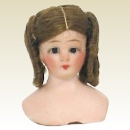 Simon Halbig 1160 Doll House Doll head