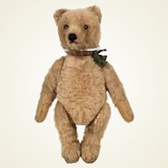Steiff 50's Original Teddy Bear