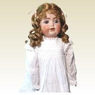 Kestner 260 bisque head toddler Doll