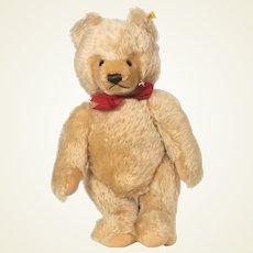 Steiff Honey Blond mohair Bear 1968 - 1990
