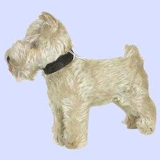 Steiff 1950's -1960's Tessie Schnauzer Dog