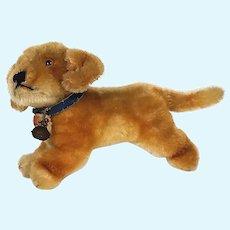 """Vintage Steiff Dachshund """"Bazi"""" Puppy Dog"""