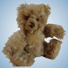 STEIFF 28CM Zotty bear with ID
