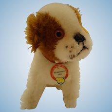 Steiff St Bernard puppy replica 1934, all IDs