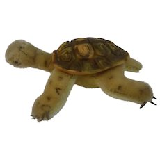 Steiff 14CM Slo Mohair Turtle with rubber shell