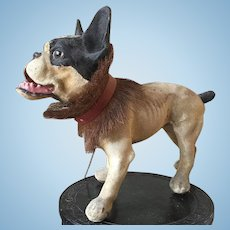 Rare INCREDIBLE antique Growling French Bull Dog Pull Toy Automaton Paper Mache c. 1890  French Growler Boston Terrier