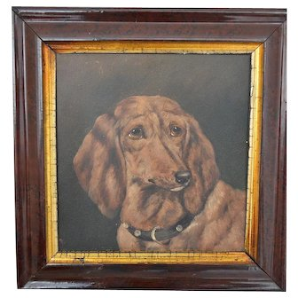C1890, Oil on Canvas Board, Fred the Dachshund, 3 Years