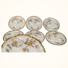 Haviland Limoges Oyster Plates Set of 6