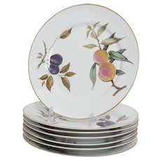 Royal Worcester Evesham Gold Pattern  7 Dinner Plates