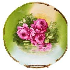 Beautiful Unmarked Decorative Plate