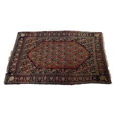 Antique Bijar Wool Rug, circa 1900. Red and Blue Paisley Design