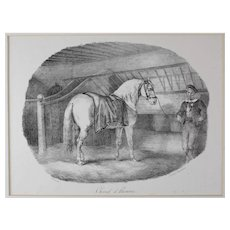 Theodore Gericault (French 1791-1824) Cheval d' Hanoure Lithograph