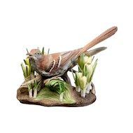 Boehm Bone Porcelain Bird Sculpture, Brown Thrasher w/ crocus # 400-26, Ltd Ed