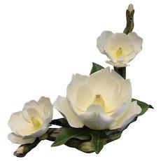 Boehm Bone Porcelain Sculpture, Ltd Edition Magnolia Grandiflora, #10378