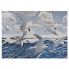 Rex Brasher American 1869 - 1960 Watercolor on paper Seascape Arctic Terns