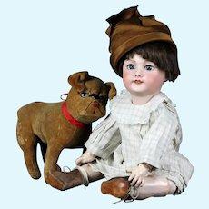 """Antique 17.5"""" Bisque cabinet doll head  SFBJ 301 Paris blue eyes large sister from Bleuette"""