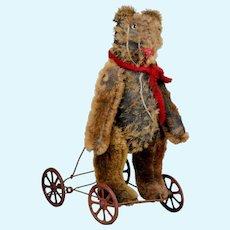 RARE ca. 1900 French mechanical pull toy on wheels antique mohair shabby Teddy BEAR bear