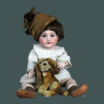 "Tiny 5"" Sweetheart vintage Steiff basset Puppy dog hound"