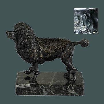 Antique 19th century cold paint black poodle dog Vienna bronze Austria desk pen nib wipe Bergman Foundry marked
