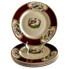 Myott Staffordshire England Chelsea Bird 5 Large Dinner Plates Red/Maroon