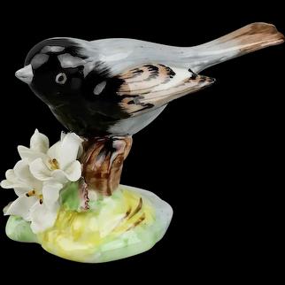 Redstart Bird Figurine Raybur English Bone China Hand Painted
