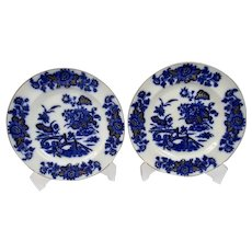 Flow Blue Transfer Ware Pair Of Plates Yedo Pattern Gilded Details Ashworth Brothers Staffordshire England c.1880's