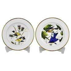 Porcelain Plates Goldfinch Eastern Bluebird Motif Artist John A Ruthven Hutschenreuther Germany
