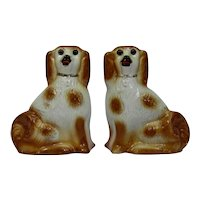 Staffordshire Pottery Pair Dogs Glass Eyes