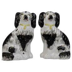 Staffordshire Pottery Pr. Dogs Black White