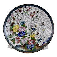 Cloisonné Plate, Multi Floral with Birds, Japanese 20th Century