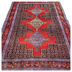 5.3 x 3.9 Bohemian tribal Oriental Persian rug √ Free shipping