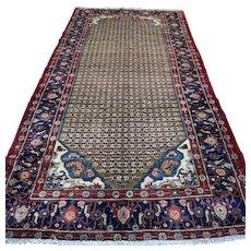 Free shipping - 10.7 x 5.2 Luxury bohemian Oriental rug √ CLEAN AS NEW