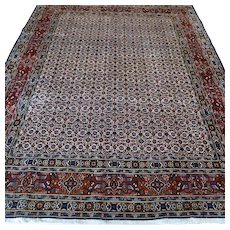 Free shipping - 8.4 x 6.6 Luxury classic bohemian Oriental rug √ CLEANED