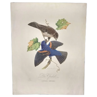 Blue Grosbeak by Athos Menaboni, ca 1940 sold by Friendly Shoes