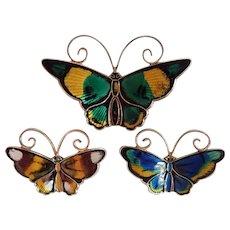Vintage David Andersen Bevy Of Sterling Enamel 3 Danish Butterfly Pins Brooch