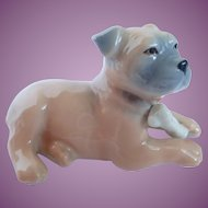 Adorable Royal Copenhagen Boxer With Bone Puppy Mini Collection Figurine #748