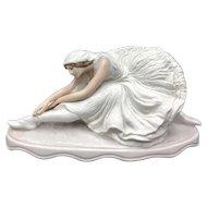 Dying Swan by Holzer Defanti