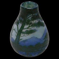De Vez French Cameo Glass