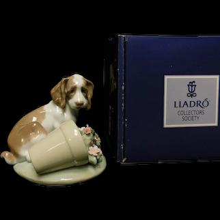 "Lladro Figurine 07672 ""It Wasn't Me"" in Original Box"