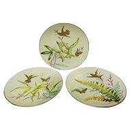 Minton Bouley English Porcelain Set With Hummingbirds