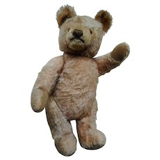 Vintage German Steiff Teddy Bear without button