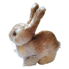 German 50´s Steiff field rabbit medium Pummy with all ID´s