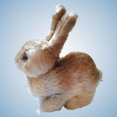 German 50´s Steiff field rabbit medium Pummy with all ID´s