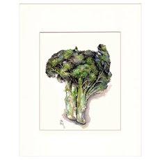 Broccoli, Still Life Watercolor Print by Julia Crainer