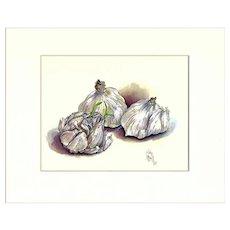 Garlic, Still Life Watercolor Print by Julia Crainer