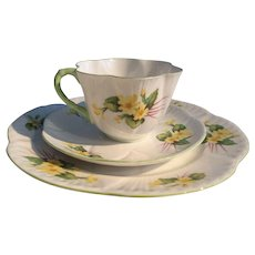 Shelley c. 1945 - 1966 Primrose patterned dainty tea cup saucer and cake plate