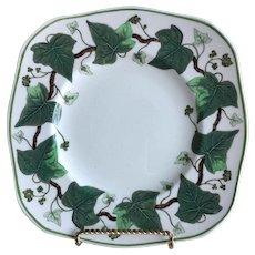 Wedgwood Napoleon Ivy Plate